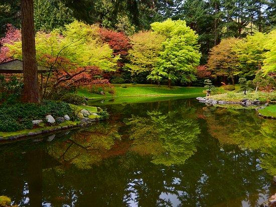 Nitobe Memorial Garden: reflections