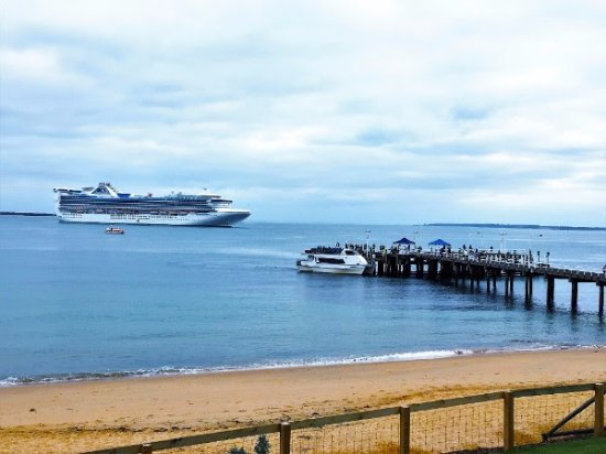 Cowes, Avustralya: Meeting the cruise ship at Phillip Island