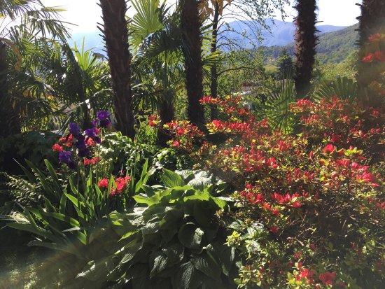 Tegna, Zwitserland: Garten
