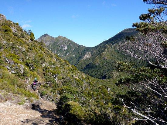 Westport, Nieuw-Zeeland: Arriving on Skyline ridge