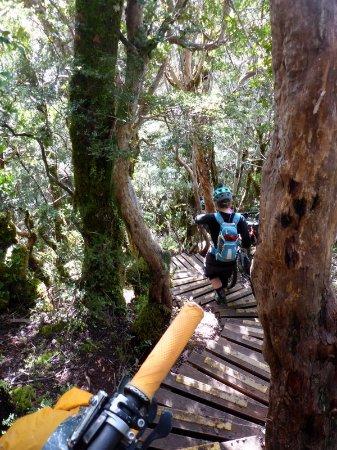 Westport, Nieuw-Zeeland: Those steps!