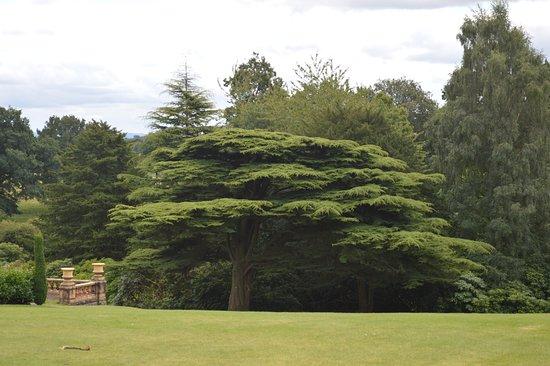 Knutsford, UK: Mansion/Parkland