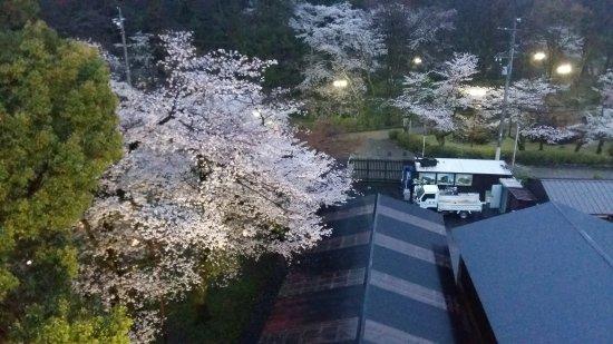 Bilde fra Chikuma