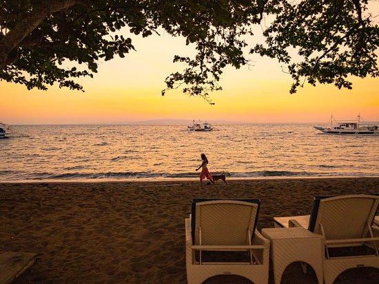Mike's Dauin Beach Resort: photo0.jpg