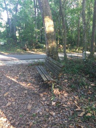 Orange Park, FL: photo7.jpg