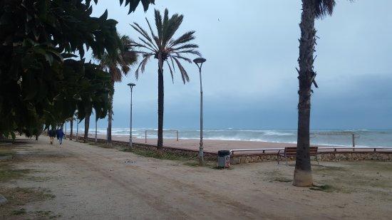 Canet de Mar, Spanje: 20170121_173649_001_large.jpg