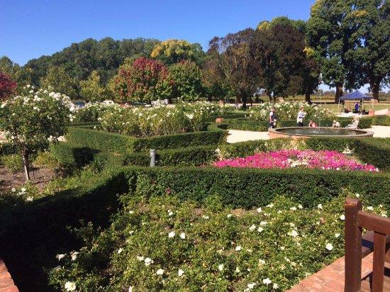 Wahgunyah, Australia: The garden