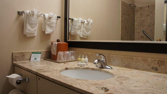 Adam's Mark Buffalo: Bathroom