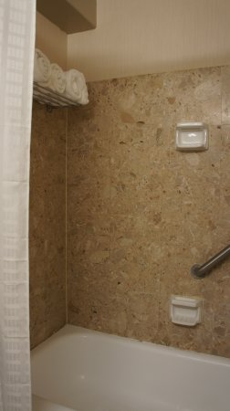 Adam's Mark Buffalo: bathtub/shower