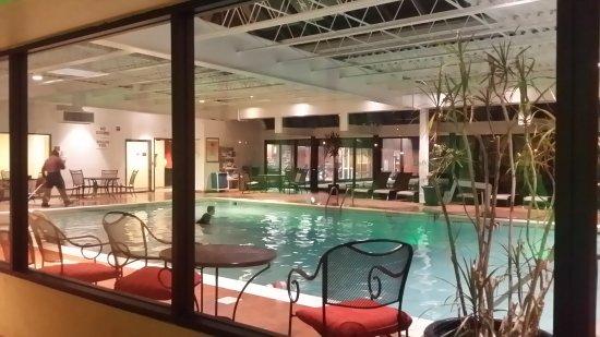 Adam's Mark Buffalo: Pool & gym