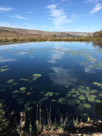 Overberg District, جنوب أفريقيا: photo6.jpg