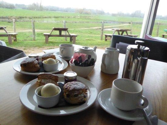 Sudbury, UK: The wonderful cream tea
