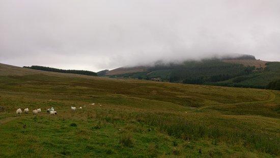 Kirkton of Glenisla, UK: IMAG0198_large.jpg