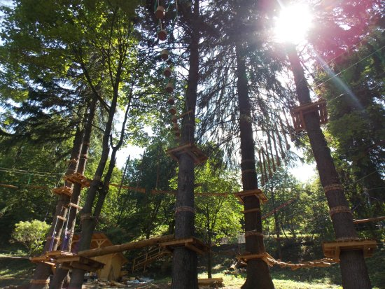 Baile Tusnad, Romania: Panoramic photo of the high rope courses