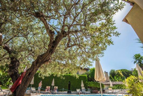 Villa Dionisio Tripadvisor