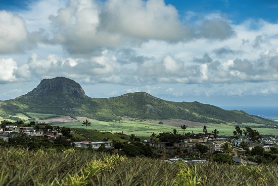 La Palmeraie Hotel: Landschaftsaufnahme vom Inselinneren.