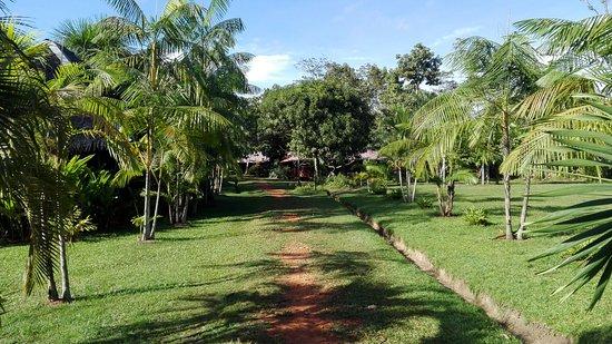 Manish Hotel Ecologico: IMG_20170425_081357_large.jpg
