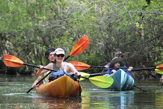 Southport - Oak Island Black water Swamp Kayak Tour