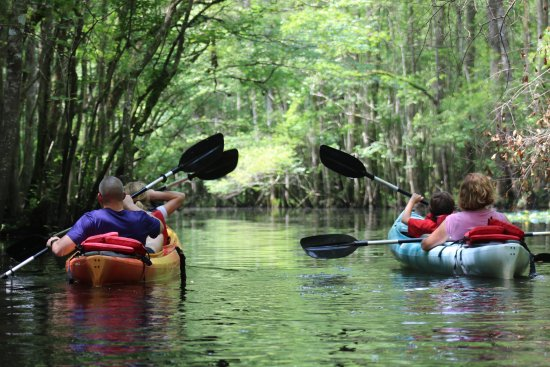 Southport, NC: Kayak Tour
