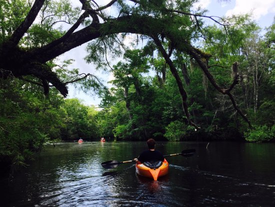 Oak Island - Southport - Wilmington Kayak Tours