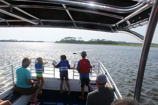 Southport, NC: Dolphin Viewing Boat Tours
