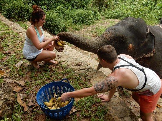Phang Nga, Tailandia: photo2.jpg