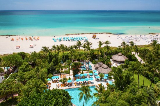 The Palms Hotel & Spa: Tropical gardens at the edge of the Atlantic Ocean