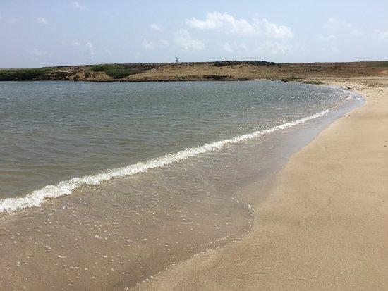 Kralendijk, Bonaire: The lake where the horse-swmming happens
