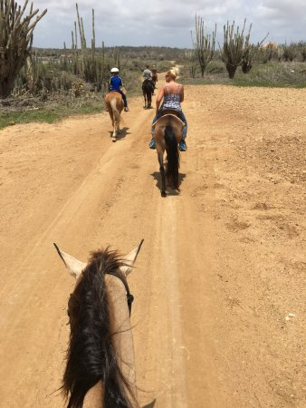 Kralendijk, Bonaire: The trail ride through the backcountry is easy for any rider, with narrating by Bregje
