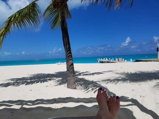 Club Med Turkoise, Turks & Caicos: My view from my shaded lounge!