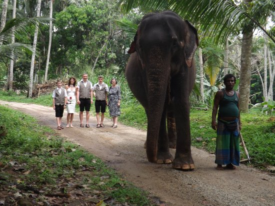 Kegalle, Sri Lanka: Now off on a walk through the grounds.