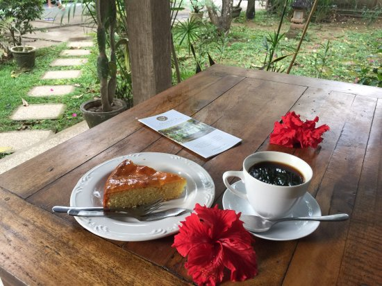 Lovina Beach, Indonesia: Coffee and home made cake!