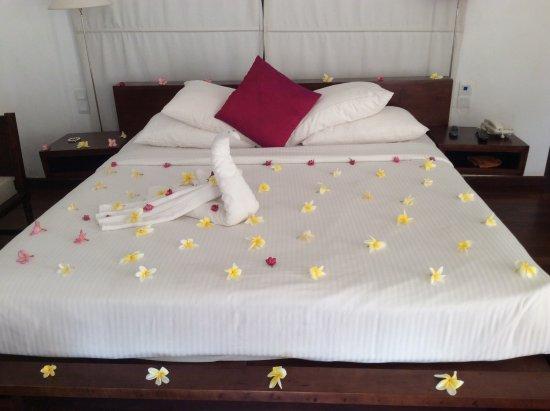 Vendol Resort - Wadduwa Photo