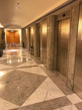 Hilton Sao Paulo Morumbi: Elevadores