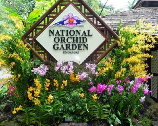 ‪National Orchid Garden‬