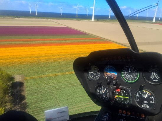 Lelystad, Niederlande: Tulip fields from the helicopter