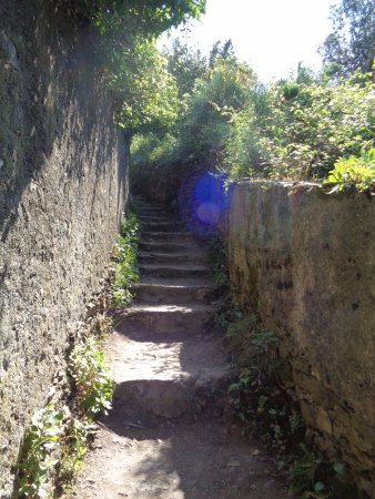 Trail 2: inizia il cammino