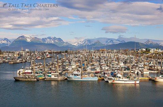 Soldotna, AK: Homer Boat Harbor