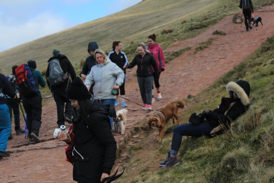 Brecon Beacons National Park, UK: There were many people (but not packed) on our way down at 12-1pm, and dogs!