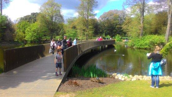 Кью, UK: Bridge Before Bamboo Garden