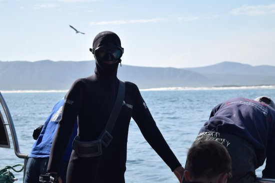 Kleinbaai, Sør-Afrika: My wife getting ready to go into the shark cage.