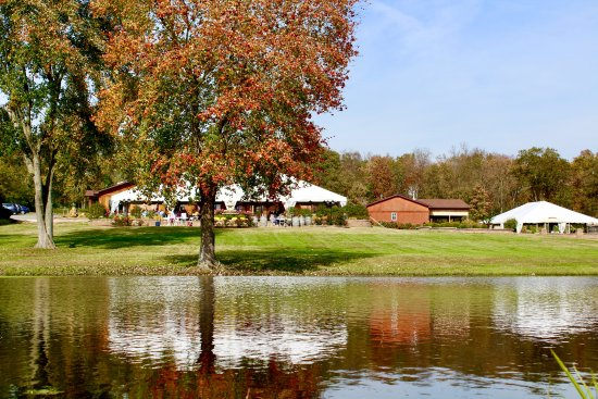 Hillsboro, MO: Fall at the Winery