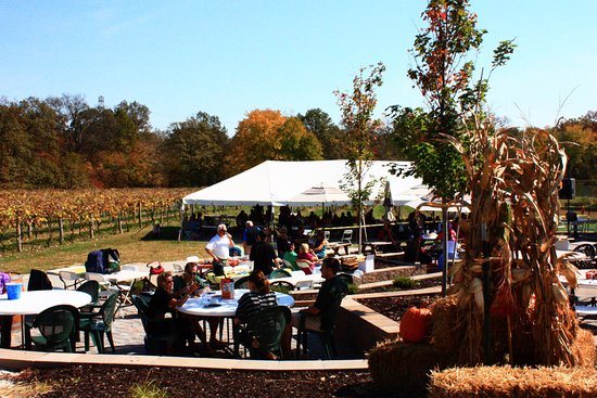 Hillsboro, MO: Fall at the Winery!  The Vineyard Tent from the Patio