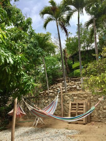 Magdalena Department, Colombia: Hammocks by the pool.