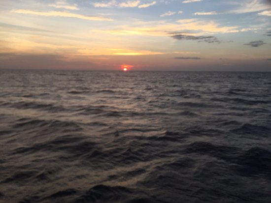Sea Bird Sailing Excursions: We still look for that green flash evertime.