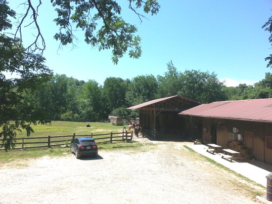 Cullowhee, Carolina do Norte: Horse Stables