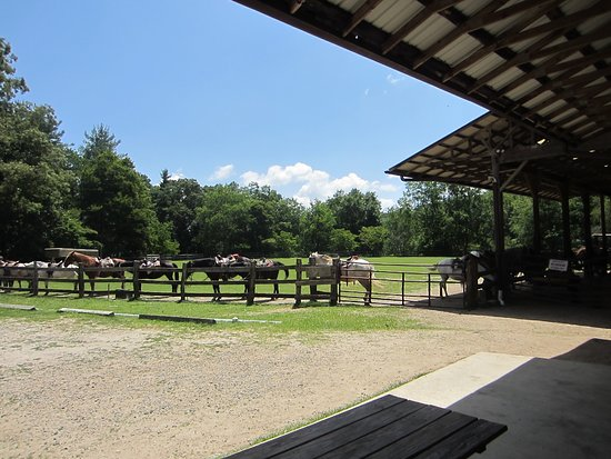 Cullowhee, NC: Horse Stables - Ring and Training area