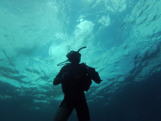 Scuba Junction Diving Co. Ltd: Chilling at Hin Pee Wee