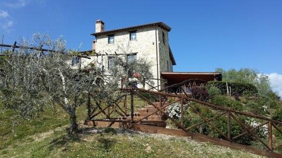 San Venanzo, Itália: 20170424_100148_large.jpg