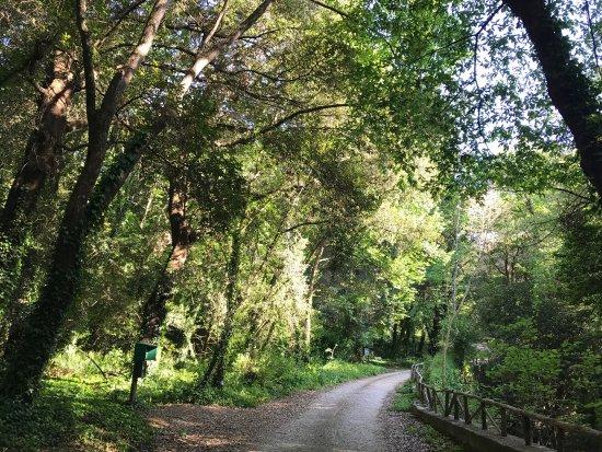 San Leucio, Italia: photo5.jpg